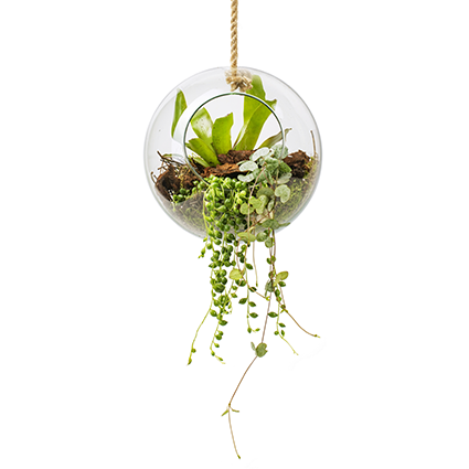 Eco vase+rope 'olga' d20 cm