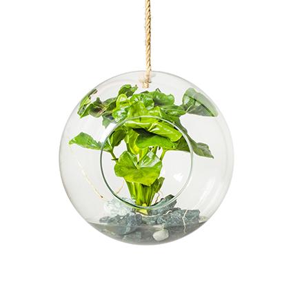 Eco vase+rope 'olga' d29 cm