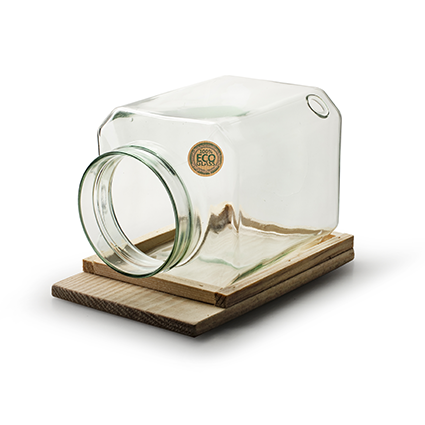 Eco vase 'nature's choice' square with