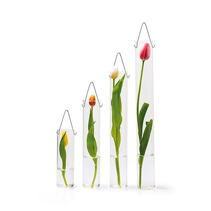 Glas tube 'bloom' h30 d6cm