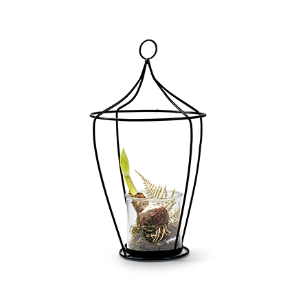 Lantern+glass 'tammy' h39 19 cm
