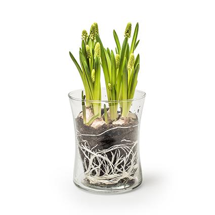 Vase 'elke S' h11 d9 cm