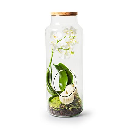 Eco vase 'gigi'+hole+lid h50 d19 cm