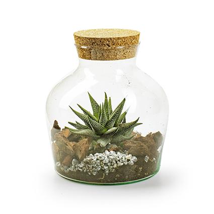 Eco vase+cork 'terrarium' h21 d17 cm