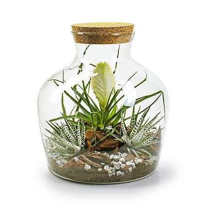Eco vaas+kurk 'terrarium' h30 d24,5 cm