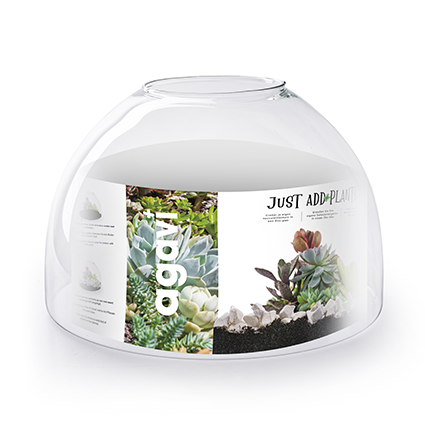 Just add plants 'agavi' h22 d31 cm