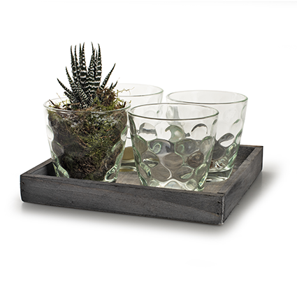 Wooden tray with glas grey 20x20 cm