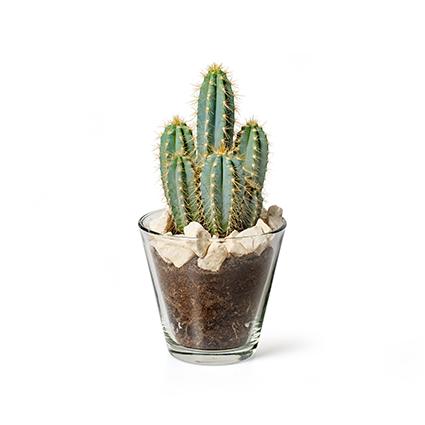 Conical vase 'matteo' h13 d14 cm
